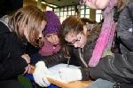 Tete-et-jambes-2009-12-16-057